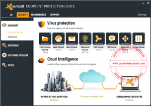avast-endpoint-protection-suite-full2-300x212-7745973