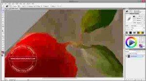 artweaver-plus-full1-300x168-3540760
