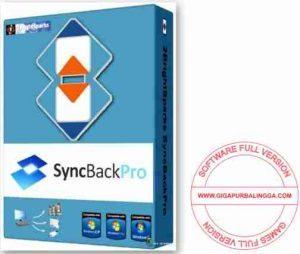 syncbackpro-full-300x254-8554867