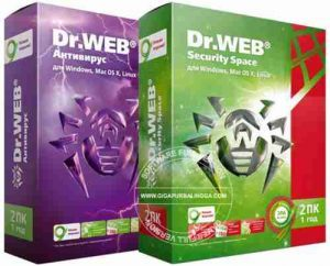 dr-web-security-space-full-serial-300x242-6033219