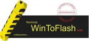 wintoflash-full-300x137-5586207