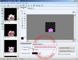 easy-gif-animator-pro-full1-300x231-2511608