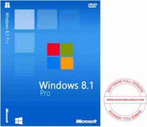 windows-8-1-professional-juli-2016-300x260-5280125