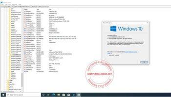 windows-10-pro-20h2-iso1-6496118