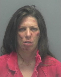 Pasco County Arrests