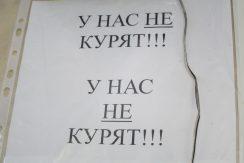IMG_8729