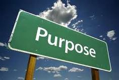 What is your purpose in life?