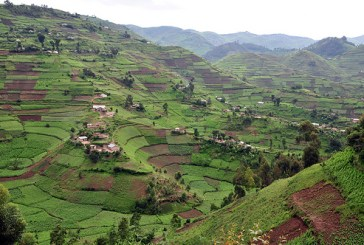 Challenges of farming in Africa