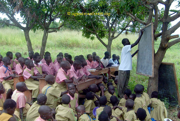 Do we have effective teachers in primary school?