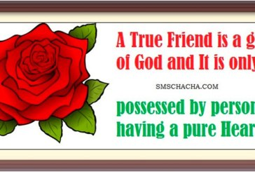 Lord thank you for my friends