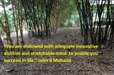 Innovative ability and stretchable mind