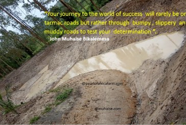 Your journey to the world of success