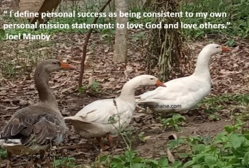 Consistency for personal success