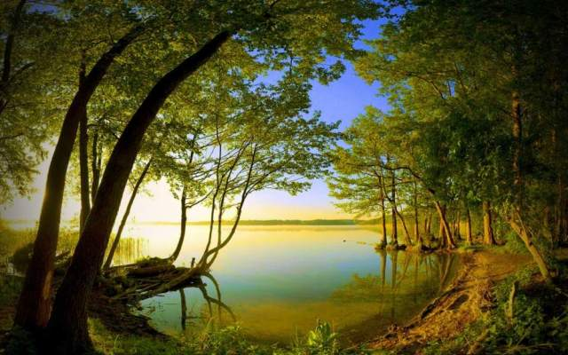Side-Lake-View-Nature-Wallpaper