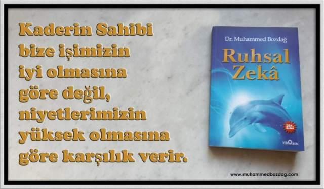 -rz-kenar (1)