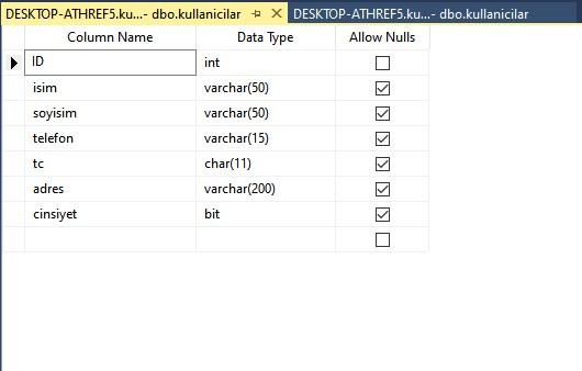 C# form için veritabanı örneği