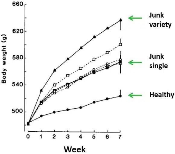 7. Incrementar la variedad de consumo incita a comer en exceso y a ganar peso