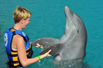Flipper in Georgetown – Grand Cayman,