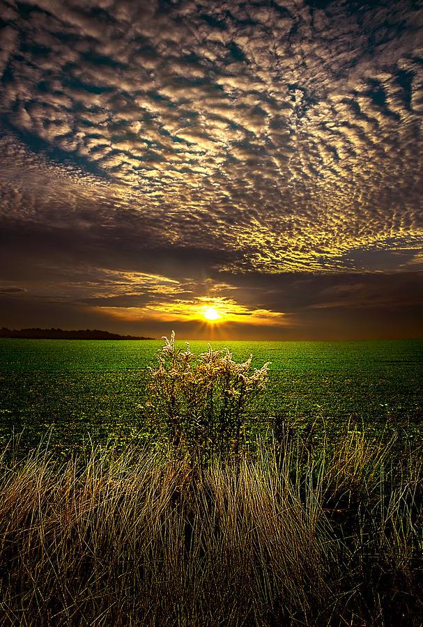 Foto de Phil Koch en PicsWe.com