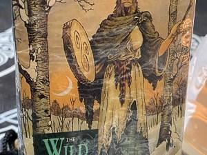 Tarot The Wild Wood