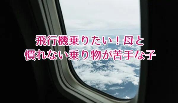 飛行機乗りたい母と慣れない乗り物が苦手な子