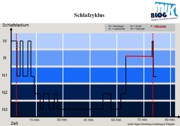 Schlafzyklus_BRAC_Modell