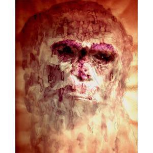 Mixed media print - portret Charles Darwin