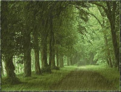 Al Qur'an mengungkapkan proses hujan