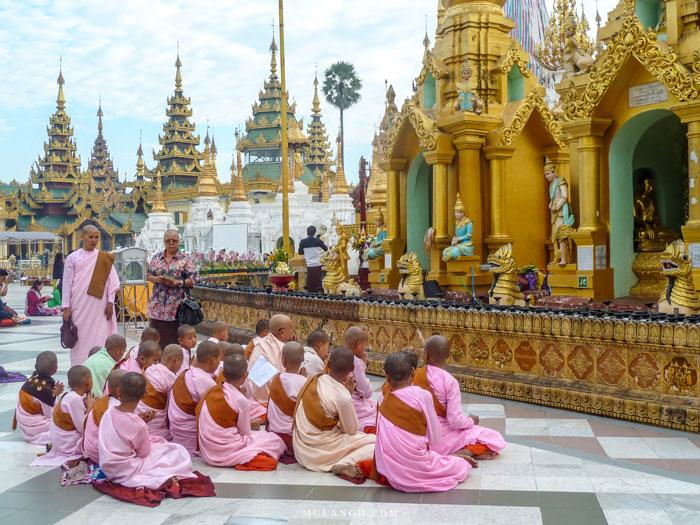 Myanmar, Yangon groupe de nônes devant un autel à la Pagode Shwedagon