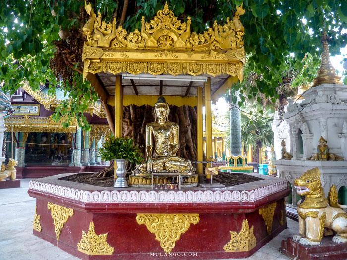 Myanmar, Yangon, Bouddha doré à la Pagode Shwedagon