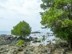 Littoral de Ko Chang