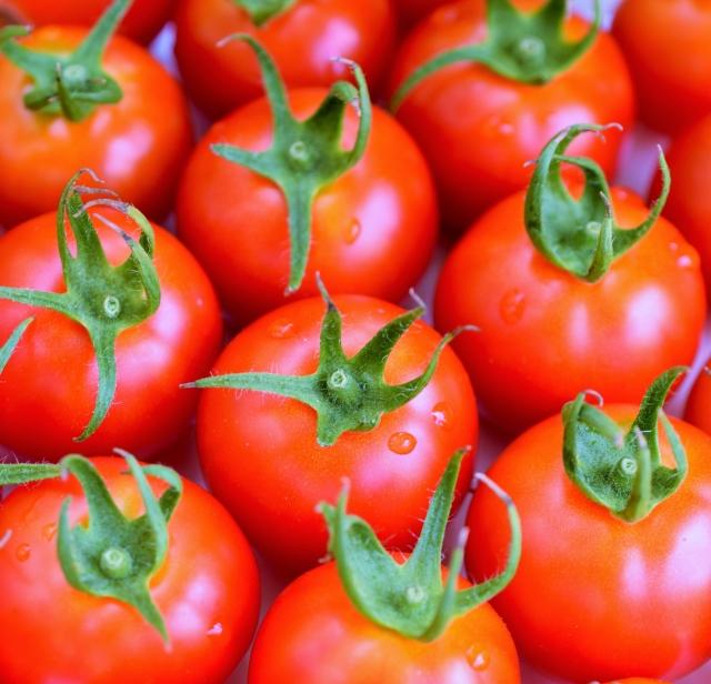 ミニトマト 大量 保存