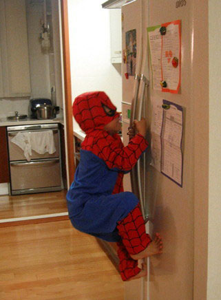 spiderman climbing fridge