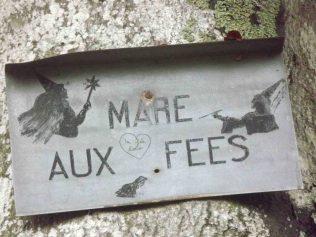 28-10-2016-fontainebleau-par-etienne-lnquetin-025