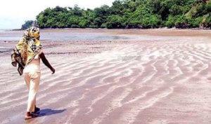 LIvresse dune Oasis