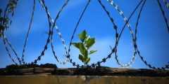 رؤية شخص مسجون في المنام
