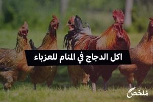 اكل الدجاج في المنام للعزباء
