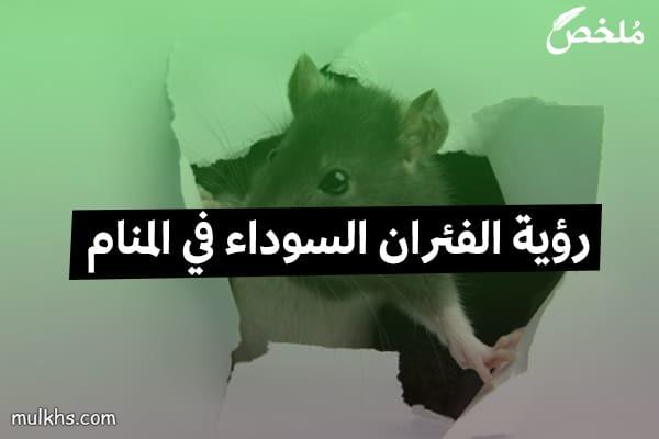 رؤية الفئران السوداء في المنام