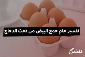 تفسير حلم جمع البيض من تحت الدجاج