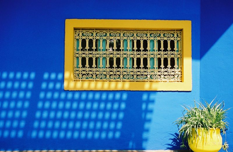 Ogrody Majorelle w Marrakechu (Fot. fiat.luxury/Flickr)