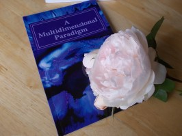 AMP Book with Rose