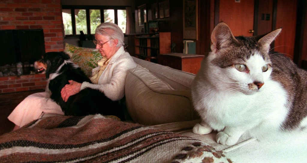Geraldene Wright of Pemaquid holds her dog while one of her 14 cats averts its eyes in 1997.