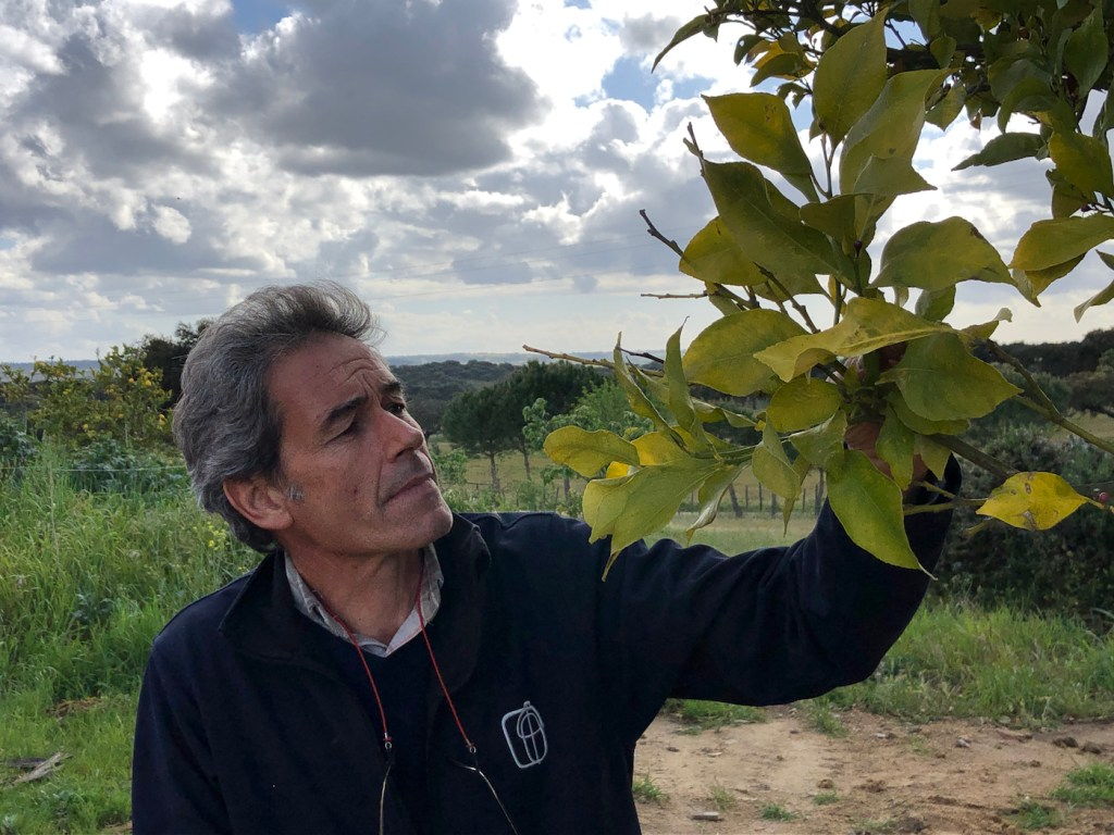 Alfredo Sendim who operates a farm in central Portugal, is one plaintiffs from eight countries to file suit against the European Union over climate change.
