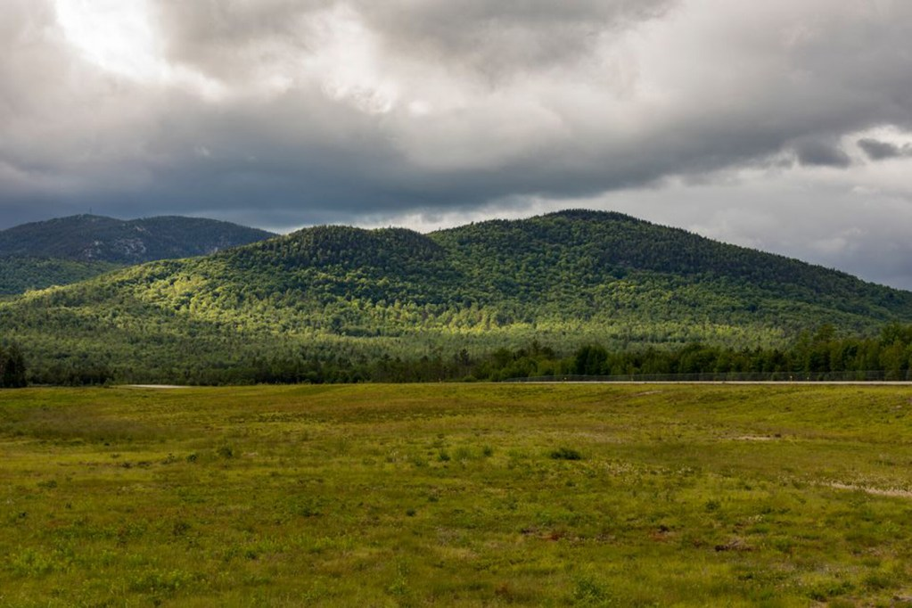 The Trust for Public Land, the Northern Forest Center and Bethel-based Mahoosuc Pathways have acquired 978 acres of forestland in Bethel on Tuesday. The parcel connects to an even larger swath of land, creating a 3,500-acre tapestry of conserved land between Bethel and Sunday River.