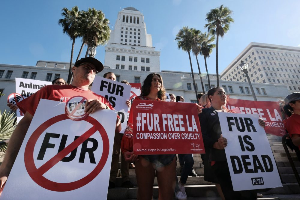 Protesters with the People for the Ethical Treatment of Animals advocate a ban on fur sales last year in Los Angeles. Under the new California law there is a fine of up to $1,000 for multiple violations.