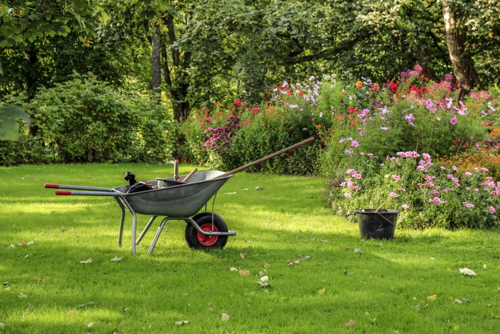 An old-fashioned wheelbarrow remains one of columnist Tom Atwell's favorite ways to haul stuff while working in the garden.