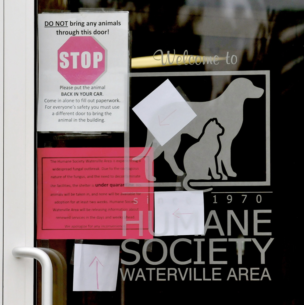 STOP: Signs on the entrance to the Humane Society Waterville Area tell patrons to stop and not bring an animal into the shelter because of a ringworm infestation on Monday.
