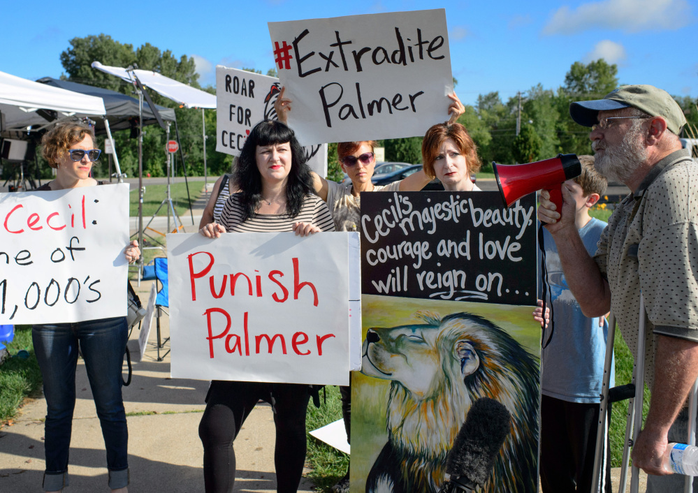 """Demonstrators gather outside the office of Walter Palmer, who returned to his dental practice on Tuesday, in Bloomington, Minn. """"We want him to know that we're not going to forget,"""" said one, referring to Palmer's killing of Cecil, a treasured lion in Zimbabwe."""