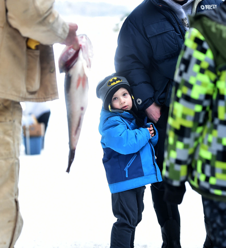 Christopher Roy, 3, looks warily at a large 5-pound bass caught Saturday by Chris Lee during the Albion Lions Club-sponsored fifth annual Ice Fishing Derby on Lovejoy Pond in Albion.