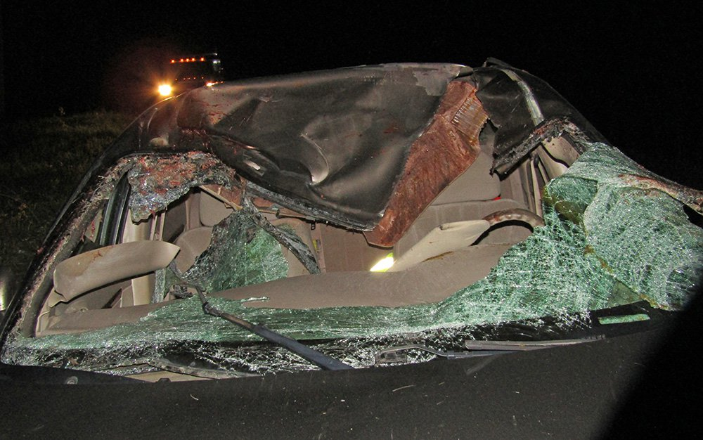 The car of  Paul McCleary of Brunswick after a collision with a moose in Greenwood Plantation.